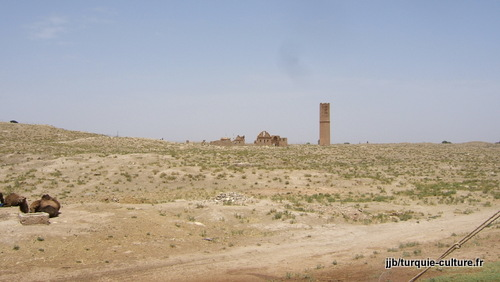 Harran, vue d'ensemble